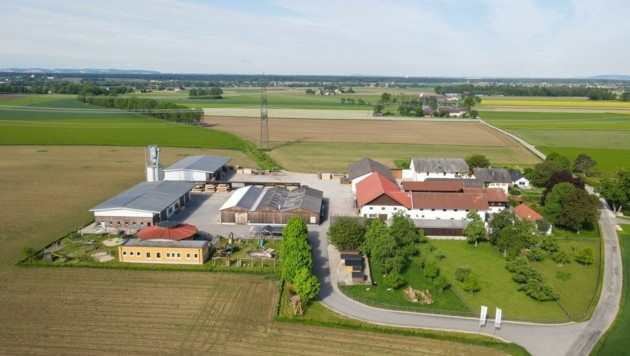 Links die Werkstätten des Holzbetriebes und rechts wohnte die Familie auf dem Bauernhof (Bild: Scharinger Daniel)