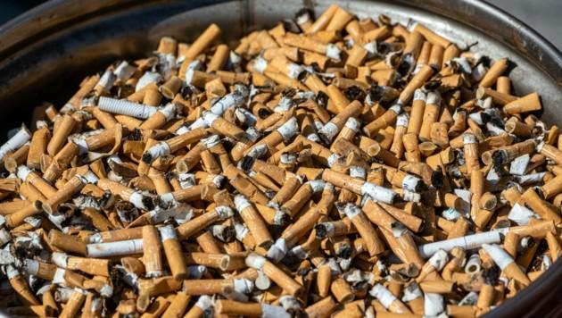 Zahlreiche Zigarettenstummel liegen in einem Sammelbehälter (Symbolbild) (Bild: APA/dpa/Armin Weigel)