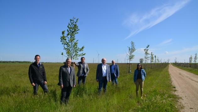 In Gols und Mönchhof freut man sich über 549 neue Bäume und Sträucher. (Bild: Charlotte Titz)