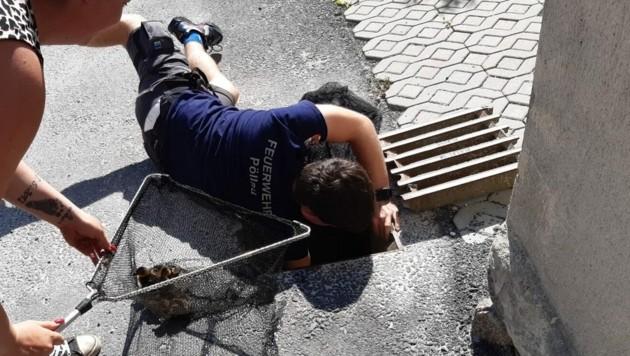 (Bild: Freiwillige Feuerwehr Pöllau)