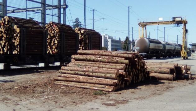 In Umladebahnhöfen soll das Holz zumindest für den Transport über die Grenze auf die Schiene gebracht werden. (Bild: Wetzikon/Christophorus77)