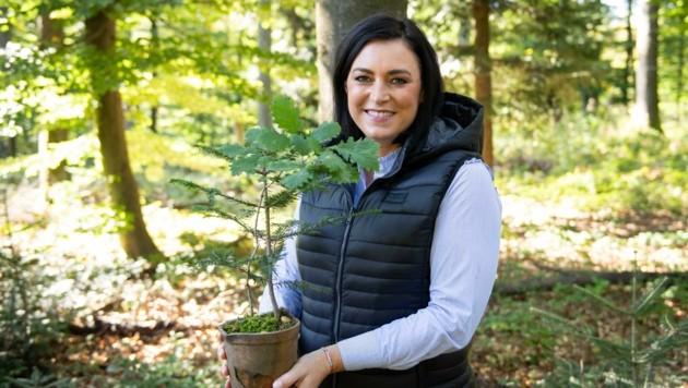 Ministerin Köstinger lässt die Wälder nicht verkommen. (Bild: Paul Gruber)
