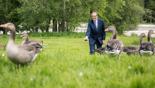 Minister Heinz Faßmann zu Besuch bei den Graugänsen von Konrad Lorenz (Bild: Max Mayrhofer)