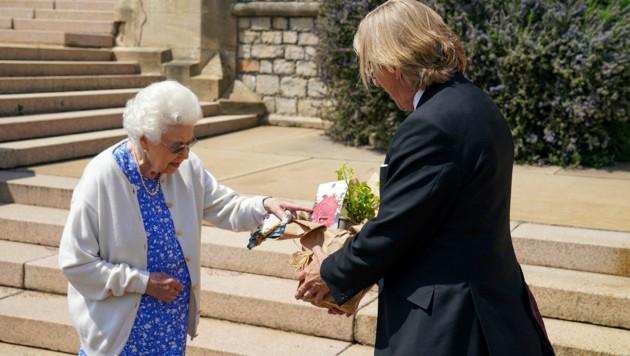 Queen Elizabeth hat in Gedenken an ihren verstorbenen Mann Prinz Philip eine nach ihm benannte Rose pflanzen lassen. (Bild: APA / Photo by Steve Parsons / POOL / AFP)