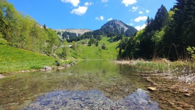 Ein Postkartenidyll: der Seewaldsee im Großen Walsertal. (Bild: rubina bergauer)