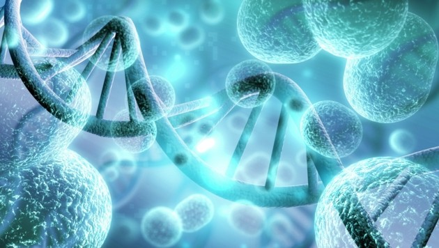 Symbolbild (Bild: stock.adobe.com)