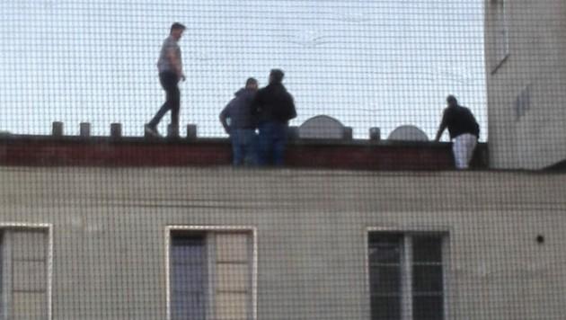 Auf dem Dach genießen die jungen Männer nicht nur den Blick über Wien. (Bild: zVg)