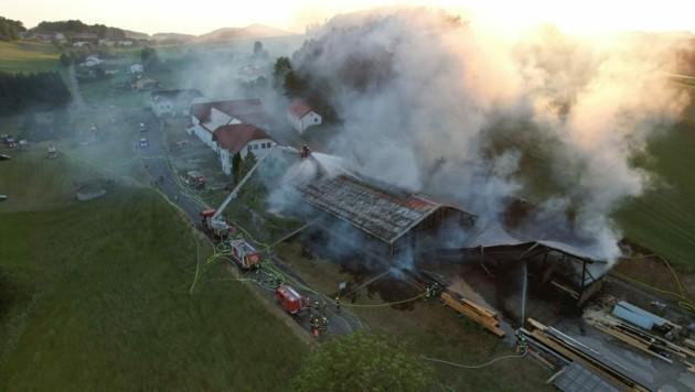 Großangriff der Feuerwehren auf den Brand der Lagerhalle in Waldburg (Bild: Werner Kerschbaummayr)