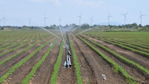Hohe Investitionen in die Bewässerung heimischer Felder sind nötig. (Symbolbild) (Bild: P. Huber)