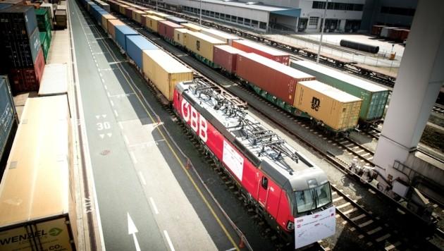 Ein 500 Meter langer Zug statt 40 Lkw brachte die Waren. (Bild: RCG Robert Illemann)