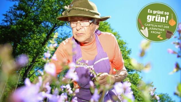 Die 90-Jährige arbeitet trotz ihres hohen Alters noch täglich im Garten. (Bild: Evelyn HronekKamerawerk)