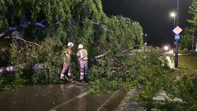 Am Mittwochabend musste die Freiwillige Feuerwehr Ried im Innkreis nach einem erneuten Unwetter mit Starkregen und Sturmböen zu weiteren Einsätzen ausrücken. (Bild: FF Ried im Innkreis)