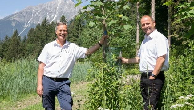 Josef Fuchs (li.) und Josef Geisler stellten am Brunellboden die Waldstrategie 2030 vor. (Bild: Christian Forcher)
