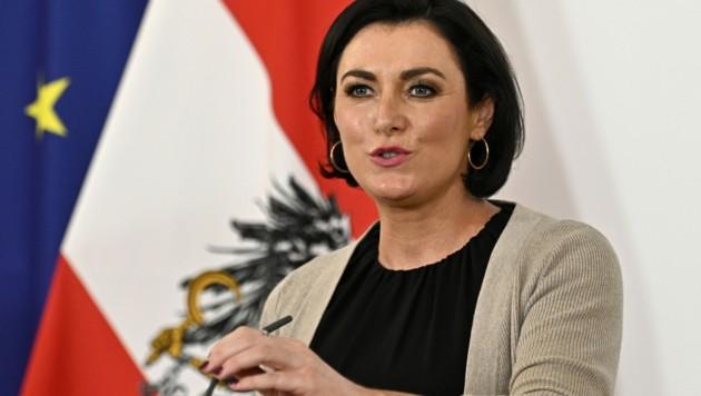 Landwirtschaftsministerin Köstinger sieht einen Erfolg, von anderer Seite hagelt es Kritik. (Bild: APA/HANS PUNZ)
