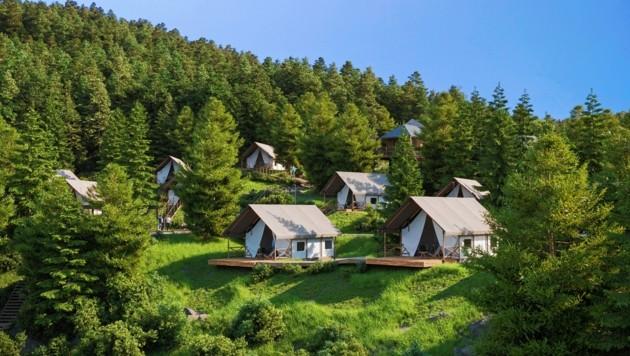 Luxuriöse Zelte, Lodges und Baumhäuser entstehen in dem neuen Glamping-Village. (Bild: zVg/MH Residenz)