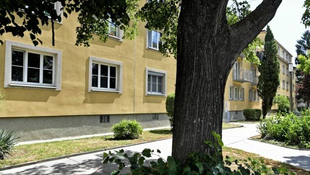 Tatort Gemeindebau: Hier spielte sich Grauenhaftes ab. (Bild: APA/Herbert Neubauer)