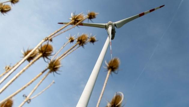 Beteiligungen an Windrädern ertragreicher als Sparbücher. (Bild: Berger Susi)