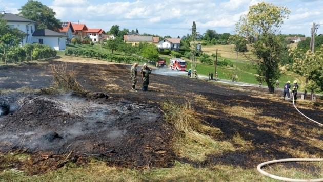 Etwa 7500m² standen in Flammen. (Bild: Bezrirksfeuerwehrkommando Jennersdorf)