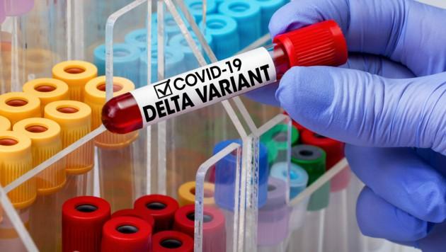 Beim Bundesentscheid Sensenmähen der Landjugend in Gurk hat sich eine Person aus einem anderen Bundesland aufgehalten, bei der inzwischen eine Coronainfektion bestätigt wurde - es besteht der Verdacht auf die Delta-Variante. (Bild: stock.adobe.com)