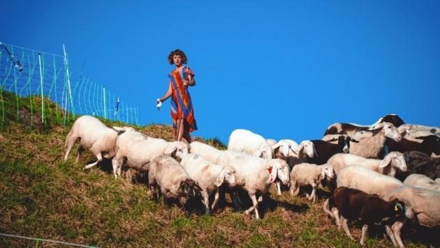 Auf der Wipflalm passt Hirtin Anna auf die Tiere auf. (Bild: Wallner Hannes)