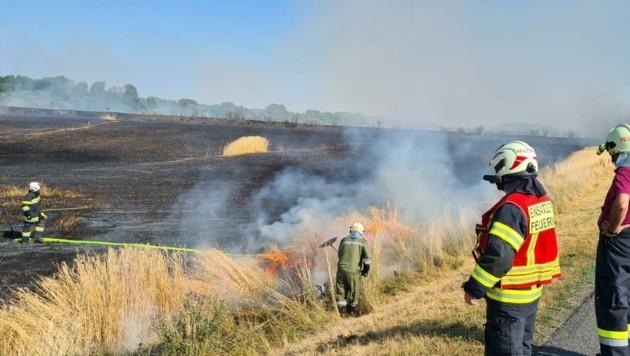 Nach eineinhalb Stunden konnte Brand aus gegeben werden (Bild: FF Gattendorf)