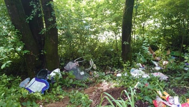 Der entsorgte Müll (Bild: APA/LPD SALZBURG)