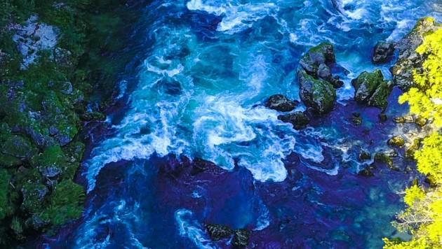 Glasklare Gebirgsflüsse sind der Ökoschatz der heimischen Alpen. (Bild: Scharinger Daniel)