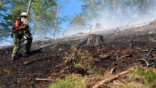 Die Einsatzkräfte bekamen den Waldbrand bei Gutenstein schließlich unter Kontrolle. (Bild: APA/FF RAMSAU/BFKDO LILIENFELD)
