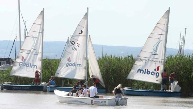 Zahlreiche Wassersportler tummelten sich am See. (Bild: Judt Reinhard)