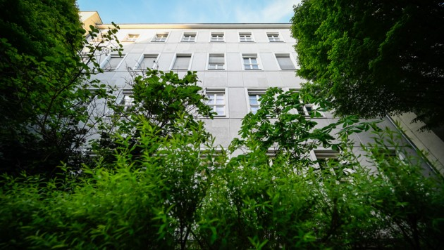 Klimamaßnahmen wie etwa die Begrünung der Goetheschule wurden auf den Weg gebracht (Bild: Alexander Schwarzl)