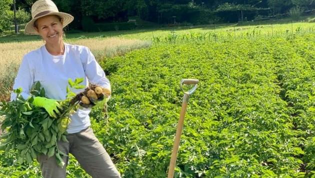 Mirjam Kampuš erntet ihre Kartoffeln händisch. (Bild: ZvG/ MIR.Farm)