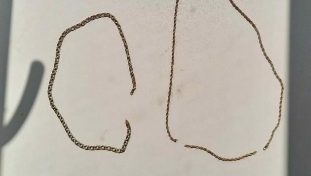 Die drei Tatverdächtigen im Alter zwischen 25 und 30 Jahren rissen einer 80-jährigen Frau zwei Goldketten vom Hals. (Bild: LPD Wien)