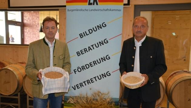 Die Landwirtschaftskammer unterstützt mit Beratungen (Bild: Charlotte Titz)