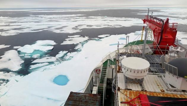 In Grönland werden künftig nur noch Forschungsschiffe - wie hier die Polarstern - durchs Eis brechen. Nach Öl wird nun nicht mehr gesucht. (Bild: AP/Universität Kiel/Felix Linhardt)