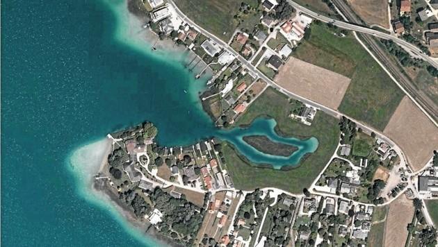 Die Insel soll Vogelparadies, das Wasser Laichgebiet werden (Bild: zVg)