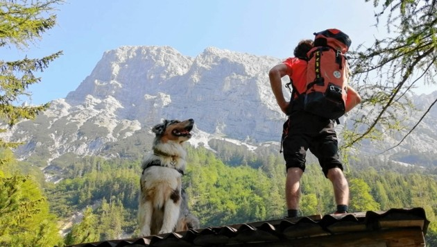 Die 30 Bergretter wurden auch von Hunden unterstützt. (Bild: Bergrettung Steiermark)