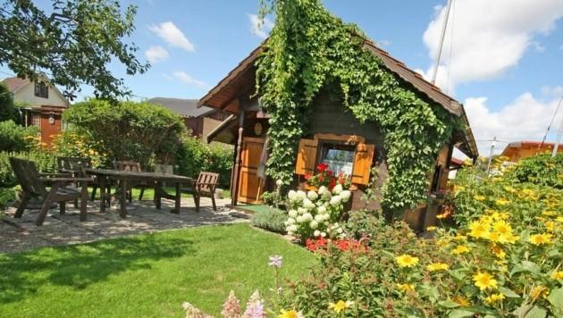 Ein Kleingarten ist der Traum vieler Wiener. Die Preise sind in den letzten Jahren explodiert. (Bild: Martin Jöchl)