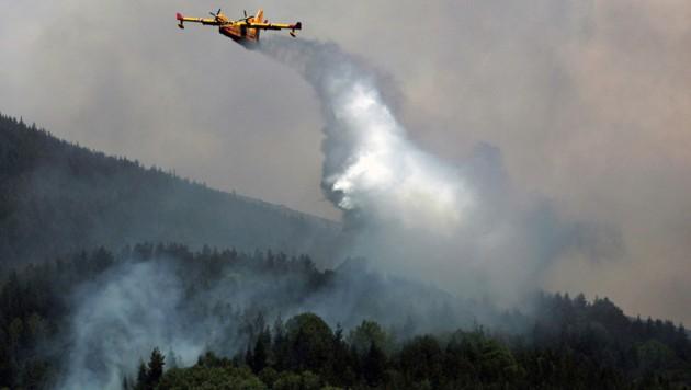 (Bild: BORYANA KATSAROVA / AFP (Archivbild))