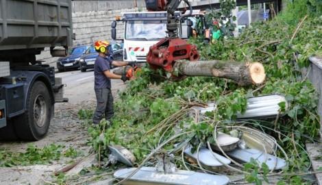 Am Lendkai fielen zahlreiche Bäume auf die Straße und den Mur-Radweg. Verletzt wurde zum Glück niemand. (Bild: Christian Jauschowetz)