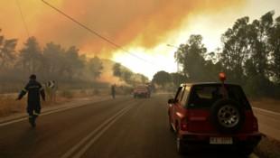 Griechische Feuerwehrmänner bekämpfen die schweren Waldbrände in Labiri in der Nähe von Patras. (Bild: AFP)