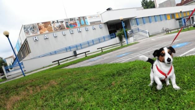 Das bestehende alte Hallenbad darf laut Gutachten nicht mehr aufgesperrt werden (Bild: Rojsek-Wiedergut Uta)