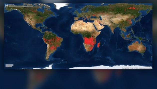 """Einen Überblick über die weltweiten Waldbrände bietet die """"Fire Map"""" der NASA. (Bild: NASA, Krone KREATIV)"""