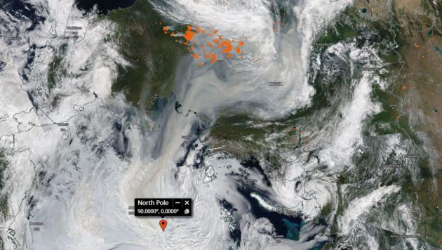 Die orangen Punkte stellen die Waldbrände in Sibirien dar. Die dunklen Rauchschwaden erreichten sogar den Nordpol. (Bild: Screenshot NASA Worldview)