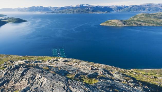 Eine Lachsfarm im Altafjord nahe der norwegischen Ortschaft Alta. (Bild: stock.adobe.com)