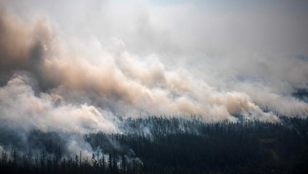 Die Brände haben bereits unvorstellbare Ausmaße angenommen. (Bild: AFP/Dimitar DILKOFF)
