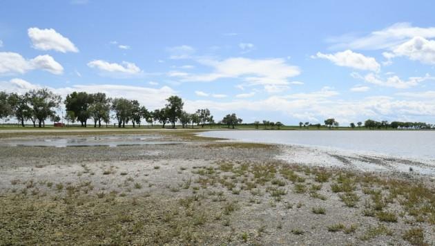 """Eine Austrocknung des Sees wird vereinzelt in Erwägung gezogen. """"Das ist keine Lösung"""", so der Bürgermeister. (Bild: Huber Patrick)"""