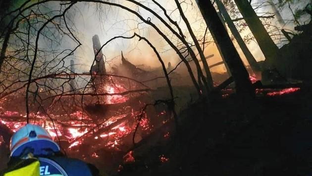 Immer häufigere Waldbrände fordern die Feuerwehren (Bild: FF Bad Eisenkappel)
