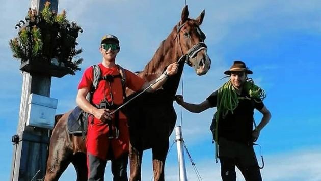 Zurück auf sicheres Gebirgsterrain brachten die Stubaier Bergretter dieses Pferd in Telfes. (Bild: Bergrettung Vorderes Stubai)