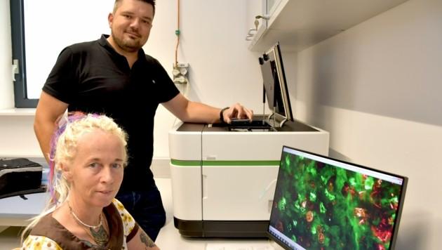 Die Immunologen Doris Wilflingseder und Wilfried Posch mit ihrem Hochleistungs-Mikroskop (Bild: MUI/Bullock)