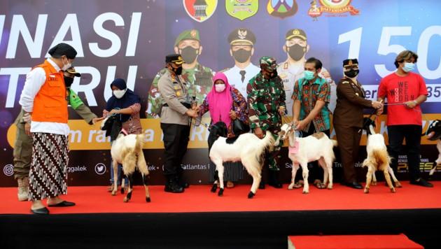 Impflotterie auf der indonesischen Insel Java: Die glücklichen Gewinner freuten sich über Ziegen und Hühner. (Bild: AFP/Trenggalek government)